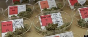 Medical marijuana is gaining understanding and acceptance across the U.S.